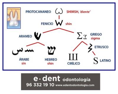 La letra DIENTE, el origen de la S