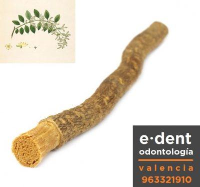 El árbol cepillo de dientes